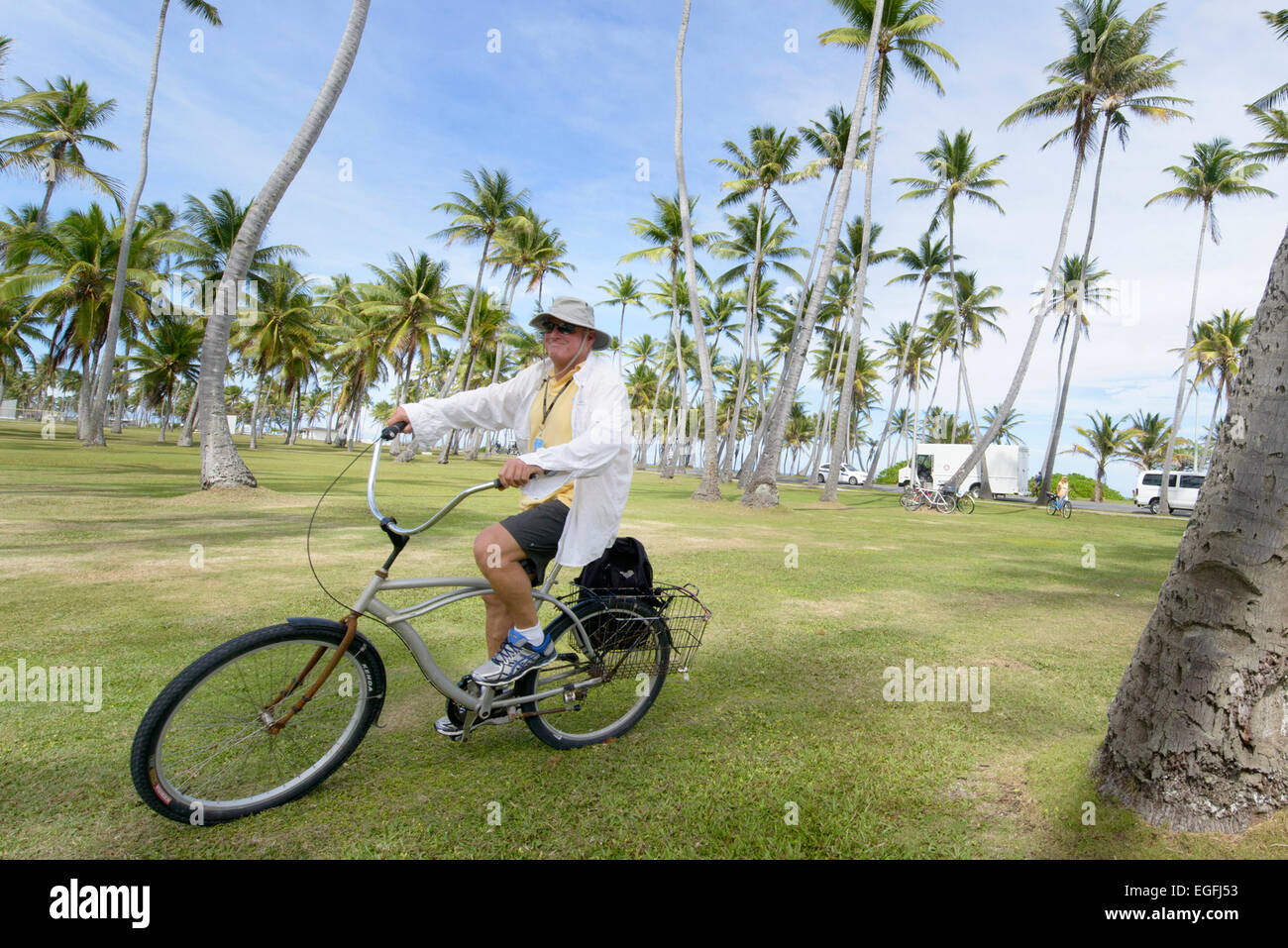 A resident rides a bicycle through a coconut palm grove February 21, 2015 in Kwajalein, Marshall Islands. Stock Photo
