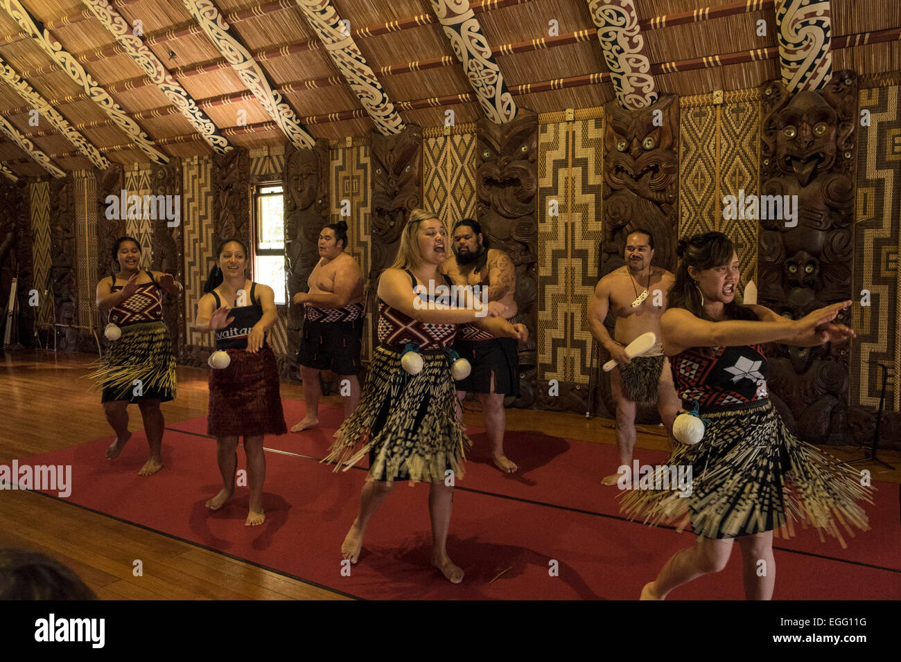 Te Pitowhenua group of performers act a traditional Maori shoe of song and dance for tourists and visitors at the - Stock Image