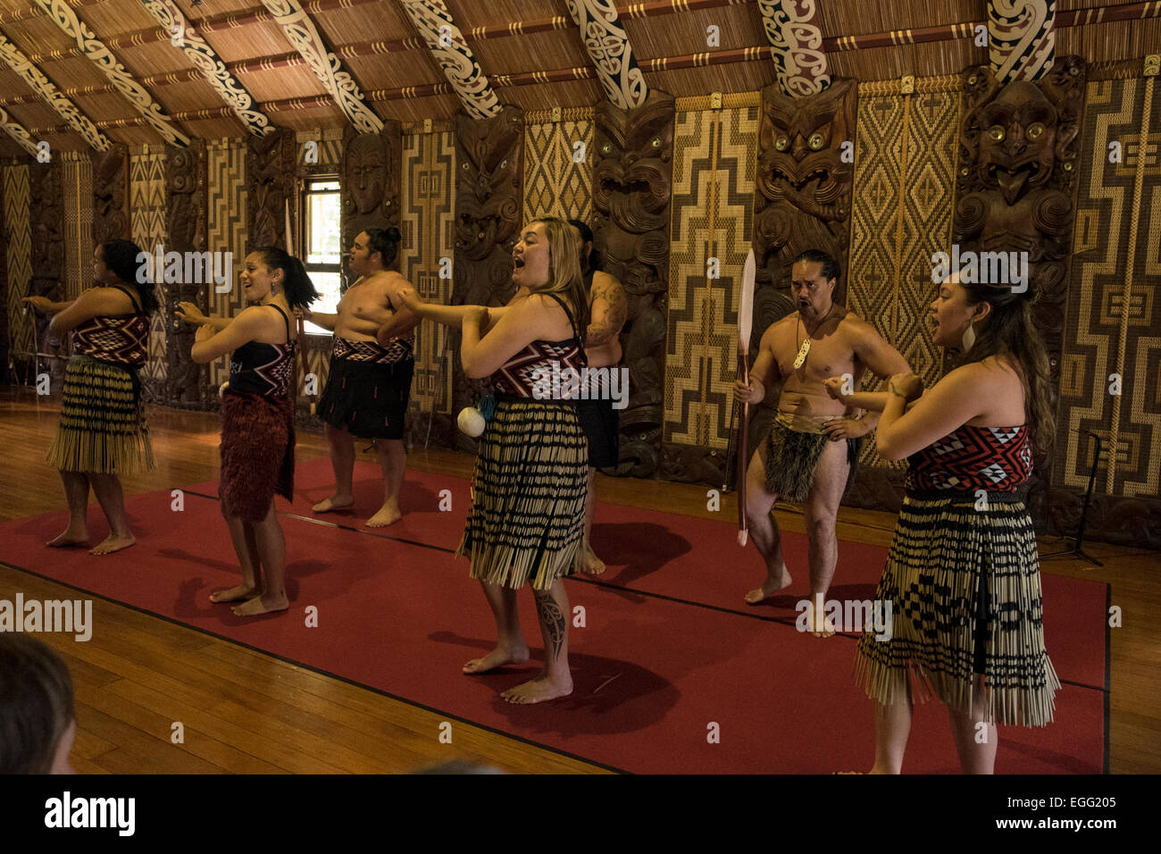 Te Pitowhenua group of performers act a traditional Maori shoe of song and dance for tourists and visitors at the Stock Photo