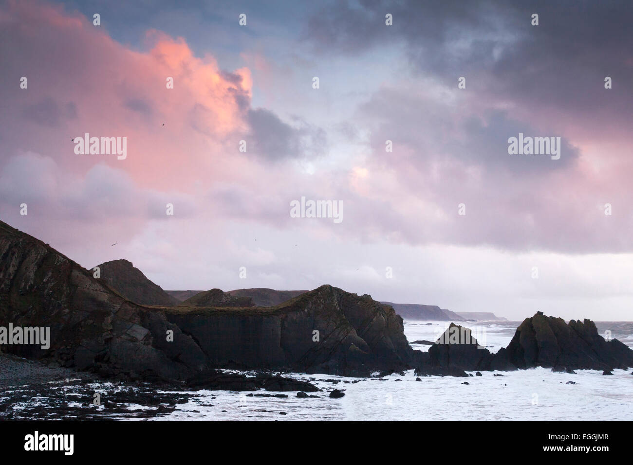 "Cliffs and rocky coast at sunset, ""Hartland Quay"", Devon, England, UK Stock Photo"
