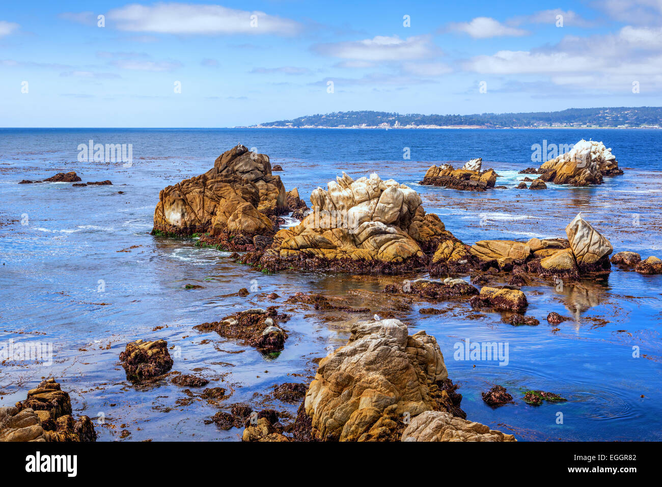 Point Lobos State Reserve. Monterey county, California, United States. Stock Photo