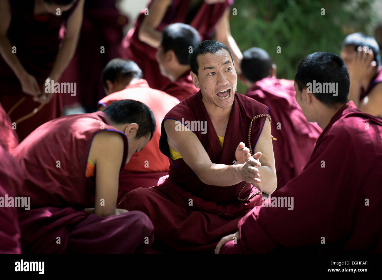A monk engaging in an animated debate, Sera Monastery, Lhasa, Tibet - Stock Image