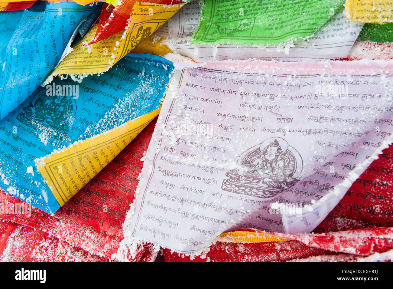 Prayer flags in encrusted in snow, Sichuan, China - Stock Image