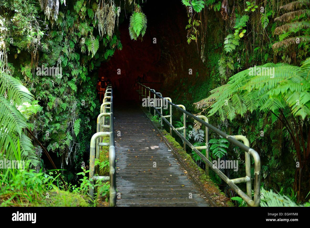 Entrance to Thurston lava tube in Volcanoes National Park on Big Island, Hawaii, USA Stock Photo