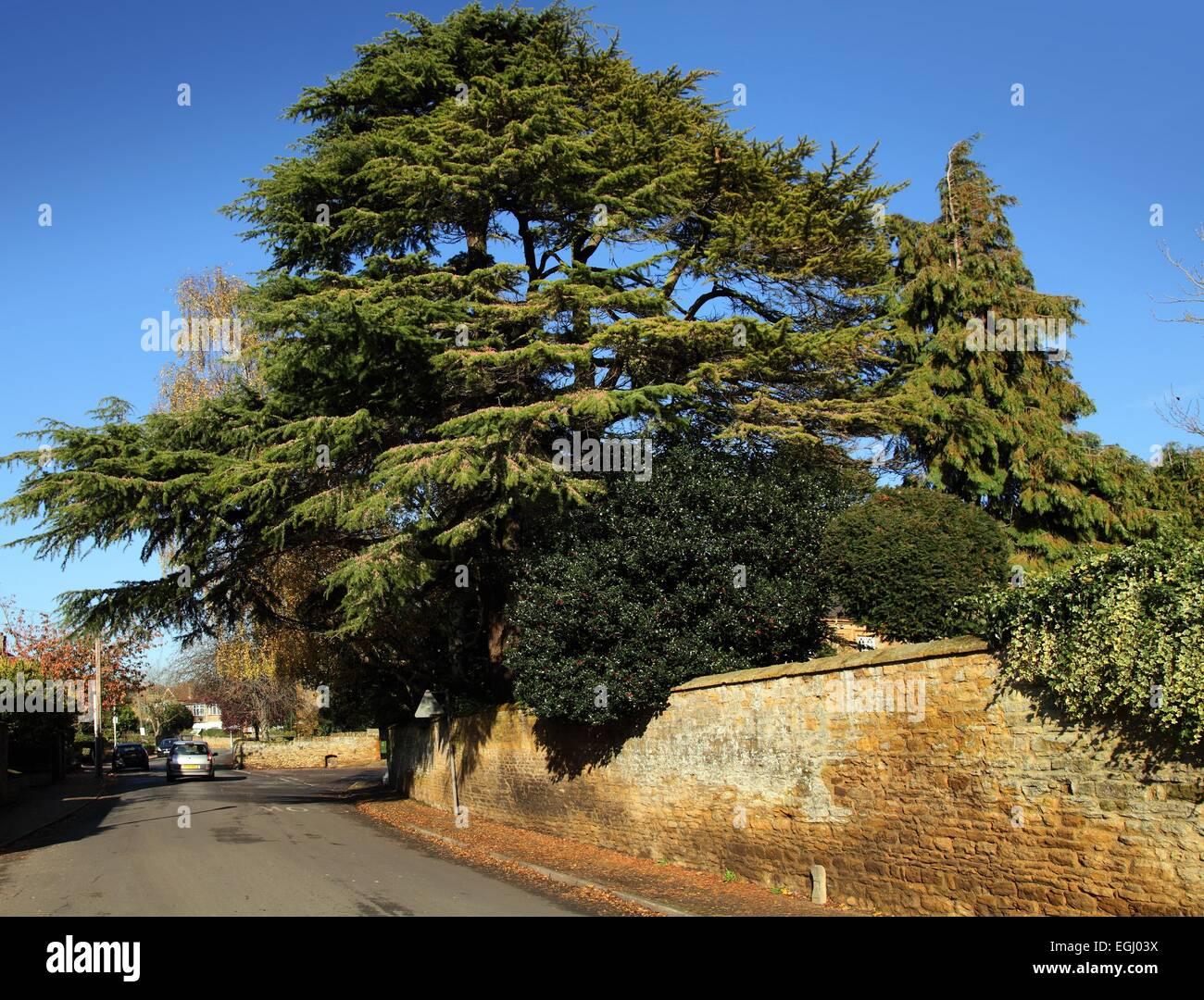 Weston Favell village,  Northampton - Stock Image