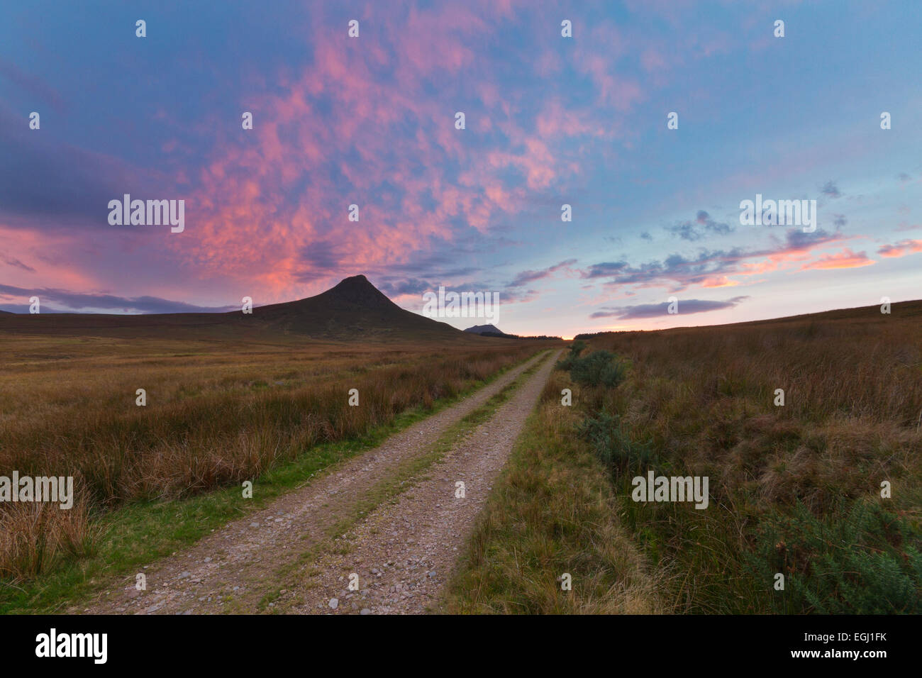 Track in Caithness landscape with Maiden Pap in distance - Stock Image