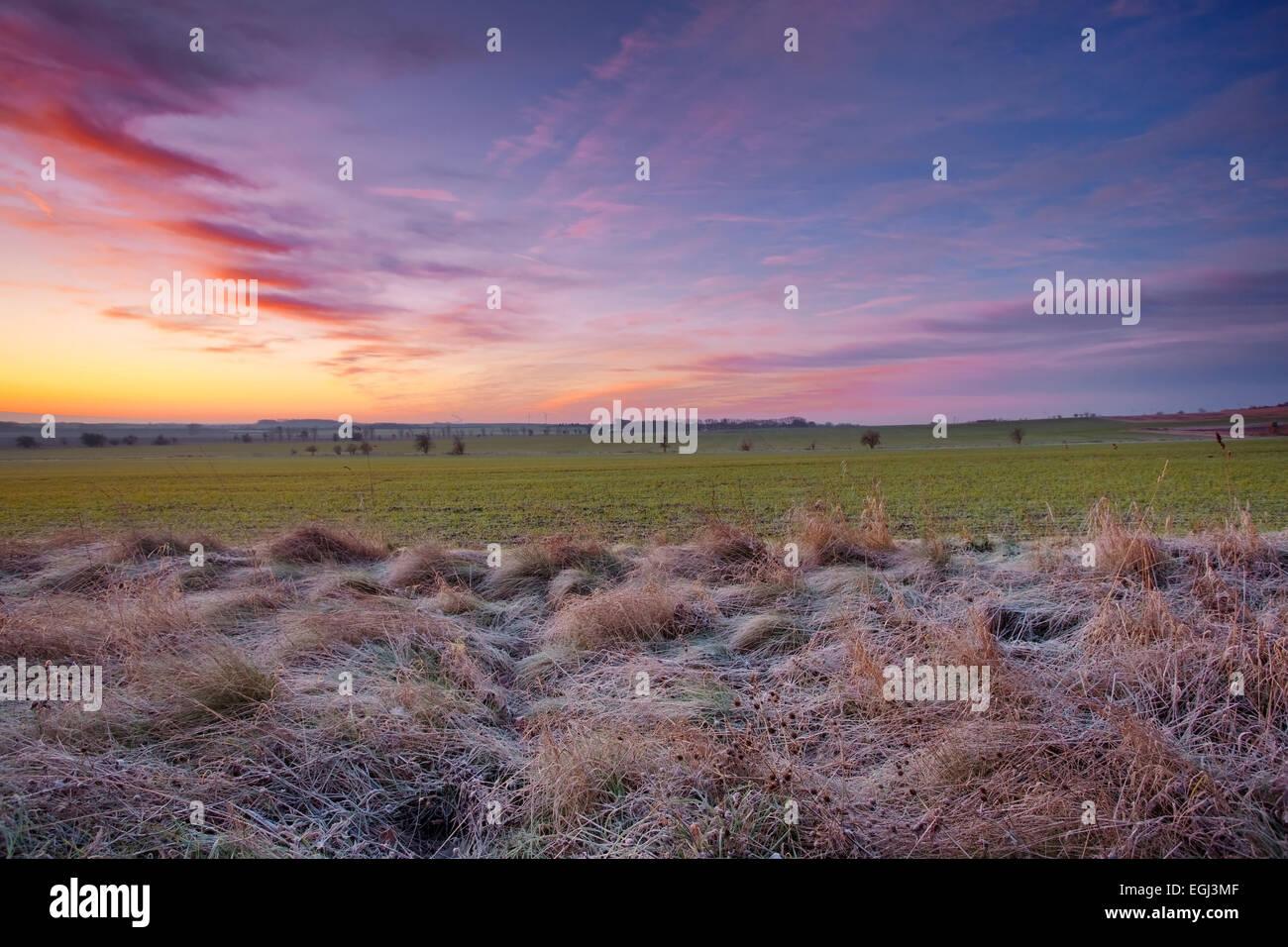 Sonnenaufgang, Frost, Felder, Wolken, Winter, Sachsen-Anhalt, Deutschland Stock Photo