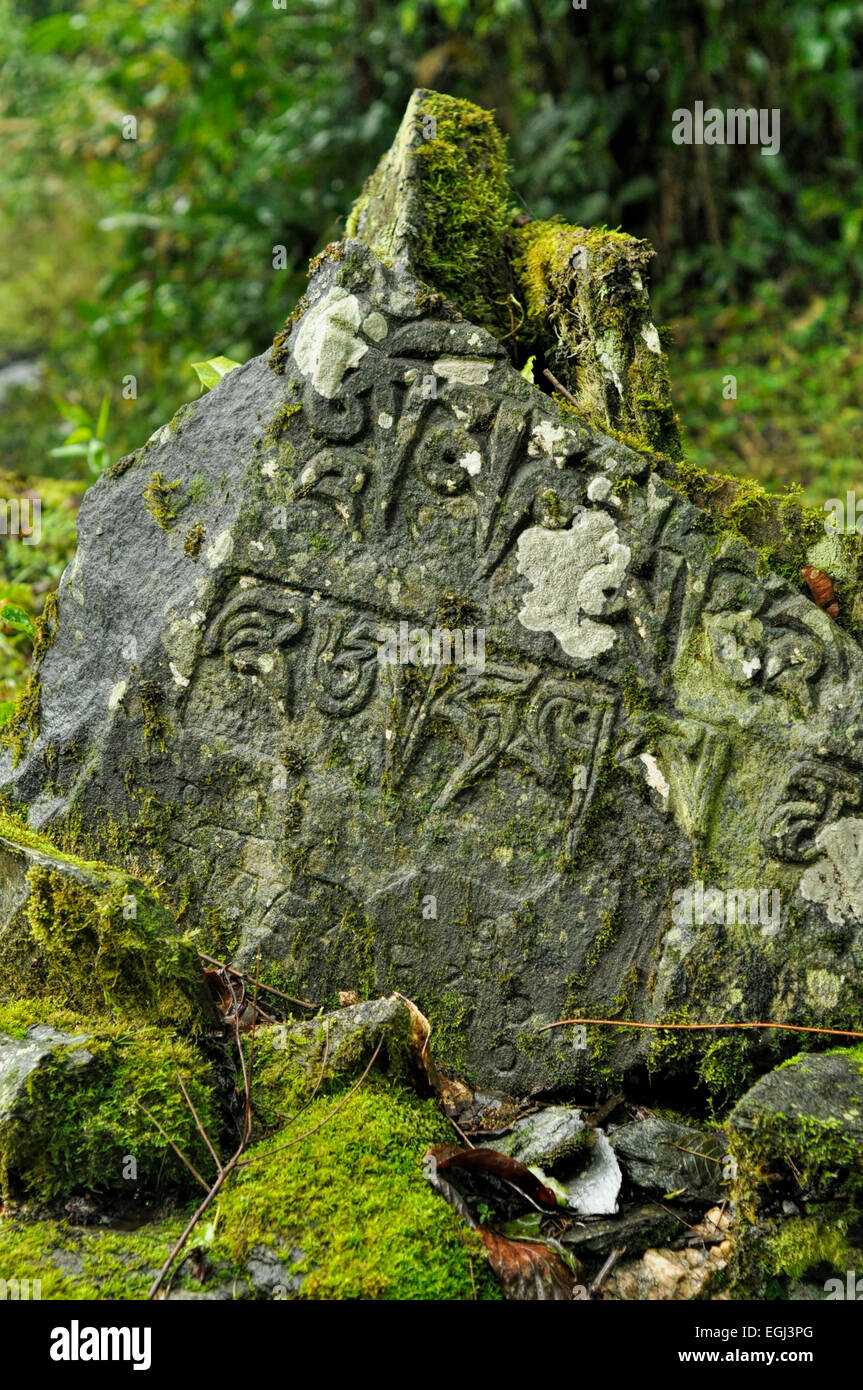Close-up view of sings carved into a large rock - Stock Image