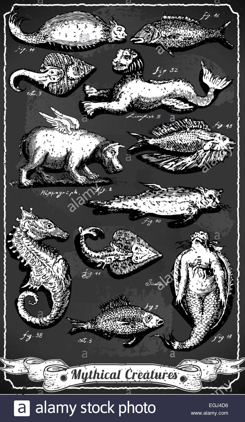 Detailed Illustration of a Vintage Set of Mythical Creatures on Blackboard Illustration in EPS10 with color space - Stock Image