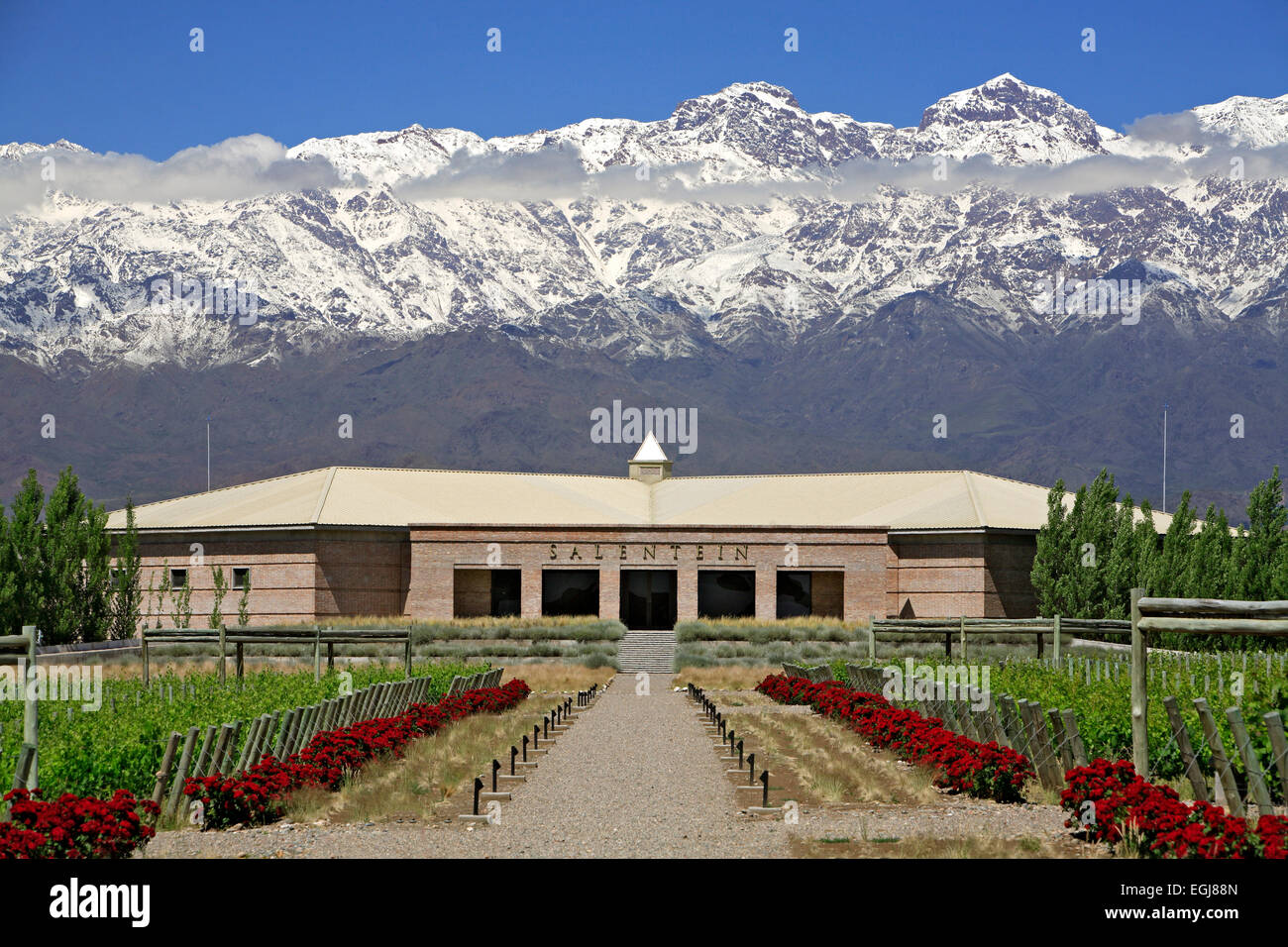 Vineyards, wine cellar and snow-covered Andes Mountains, Bodega Salentein (winery), Mendoza Province, Argentina - Stock Image