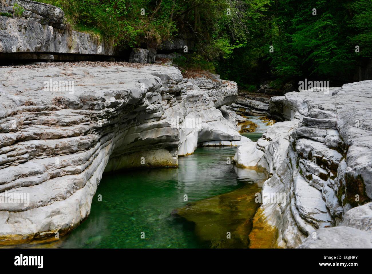 Taugl river, Tauglgries nature reserve, Bad Vigaun, Hallein District, Salzburg, Austria Stock Photo