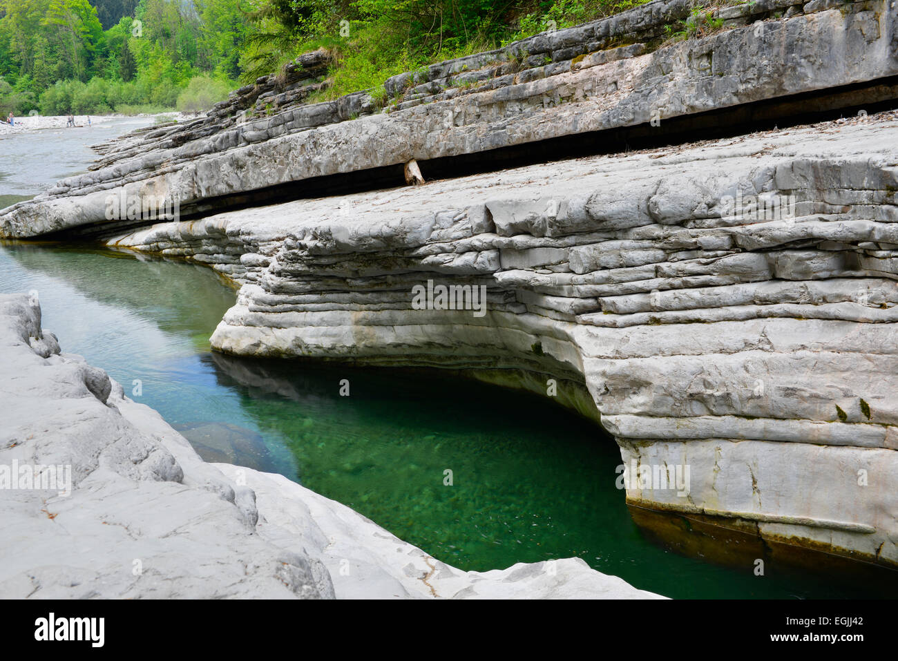 Taugl river, Tauglgries nature reserve, Bad Vigaun, Hallein District, Salzburg, Austria Stock Photo