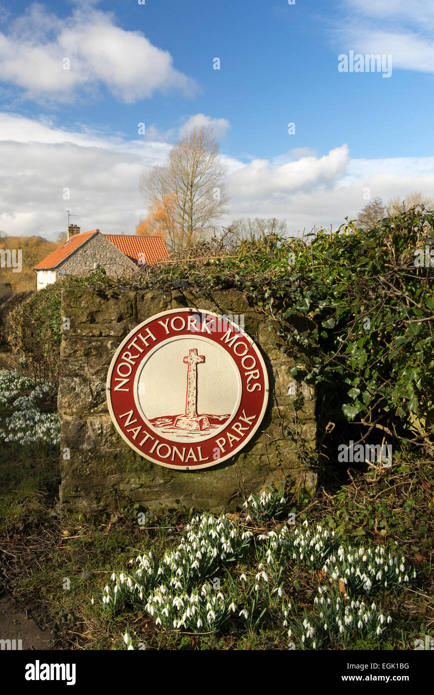 The North York Moors road sign and Snowdrops at Coxwold. - Stock Image