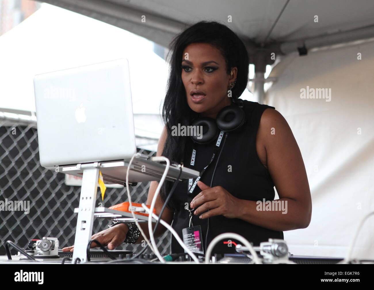 AfroPunk Festival 2014 at Commodore Barry Park - Day 1