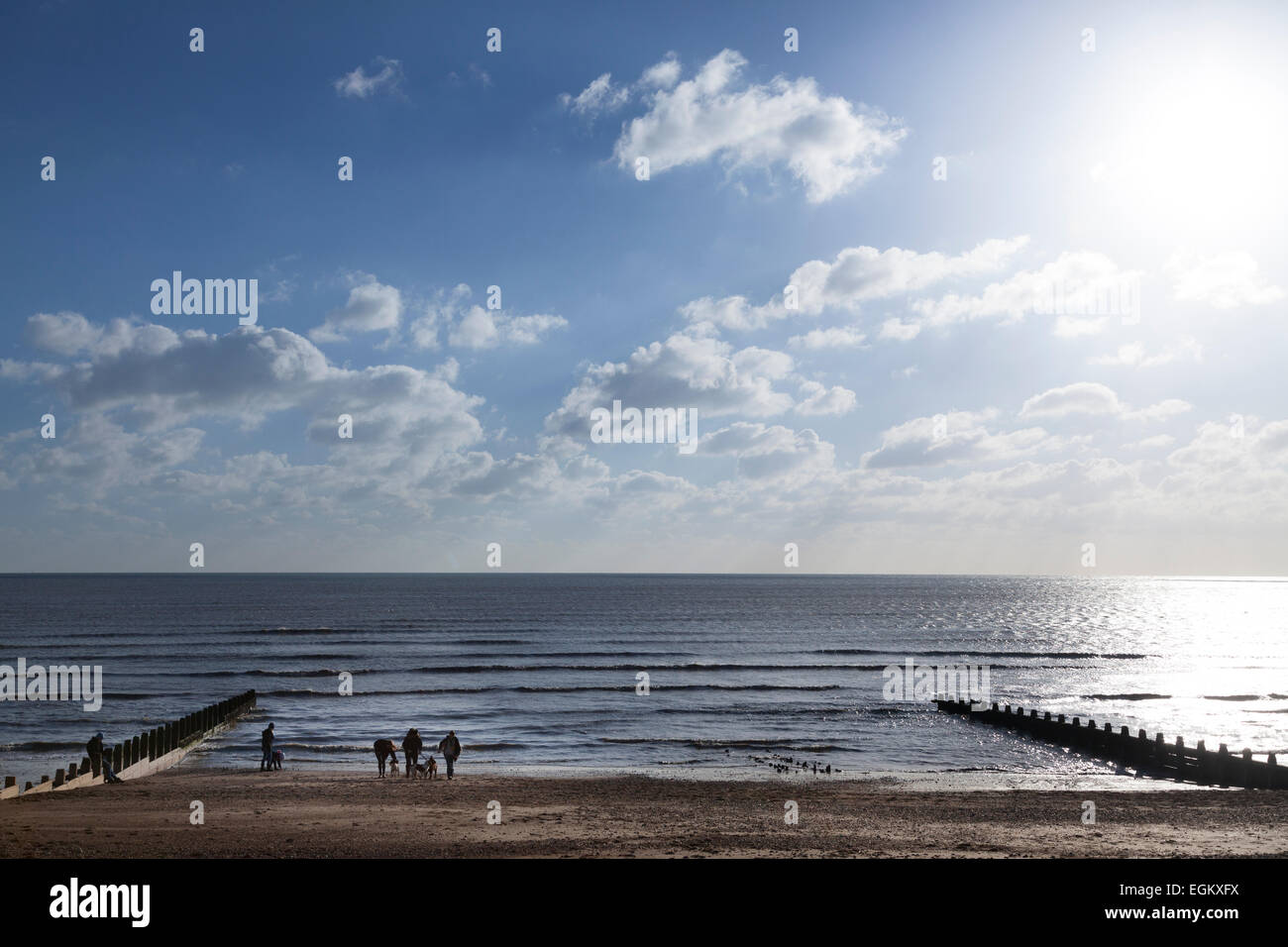 Group of dog walkers at the waters edge of the beach on a winters day Stock Photo