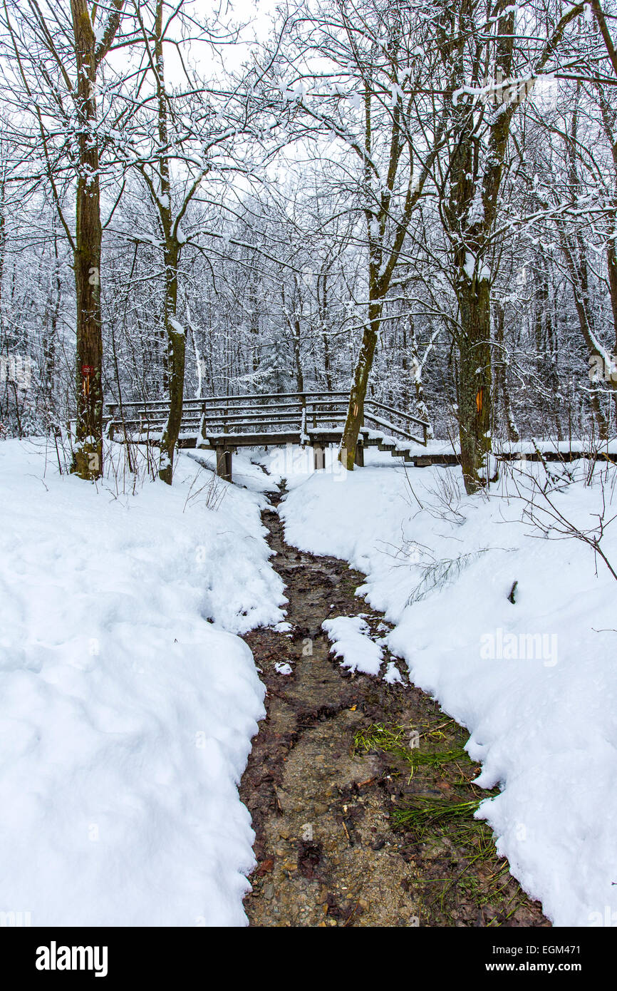 River head, of the  Ruhr, winter, Stock Photo