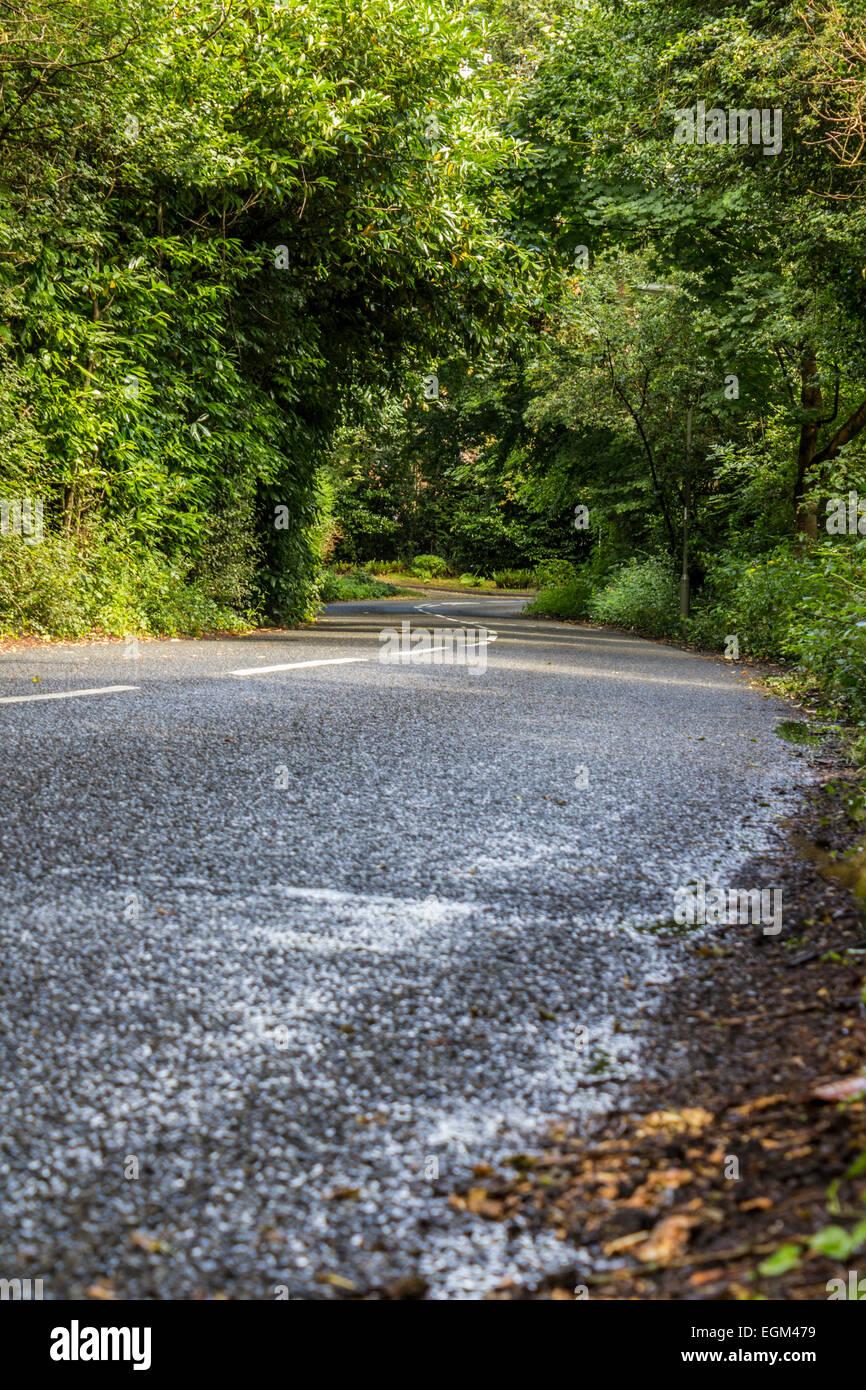 Empty, Quiet Country Road in Woking, Surrey, UK - Stock Image