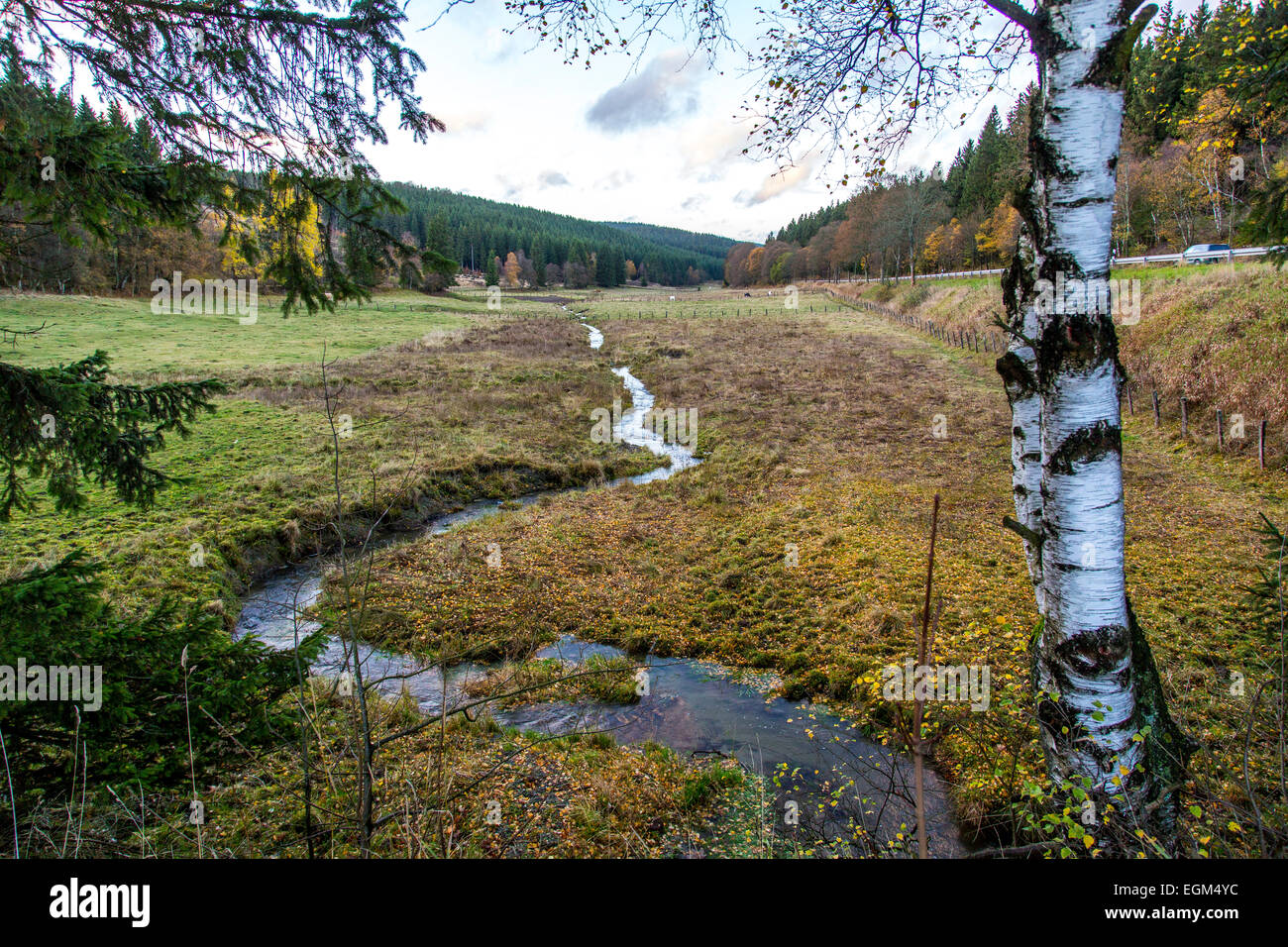 """River Ruhr, still a little creek, only 2-3 Kilometer after the Ruhr spring, in the mountains of the """"Sauerland"""" Stock Photo"""