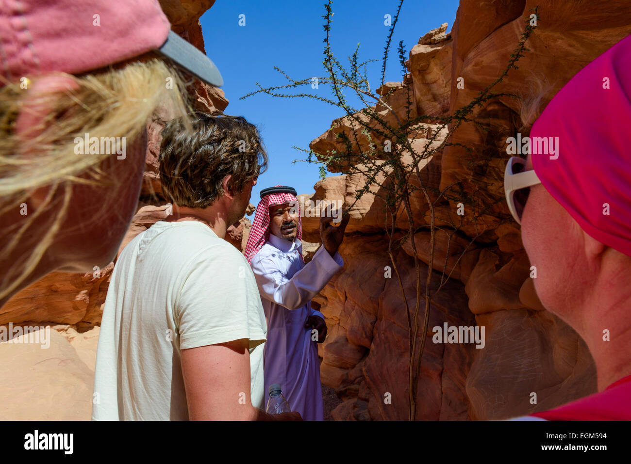 Guide showing local plants to a group of tourists in Colored Canyon, Egypt. - Stock Image