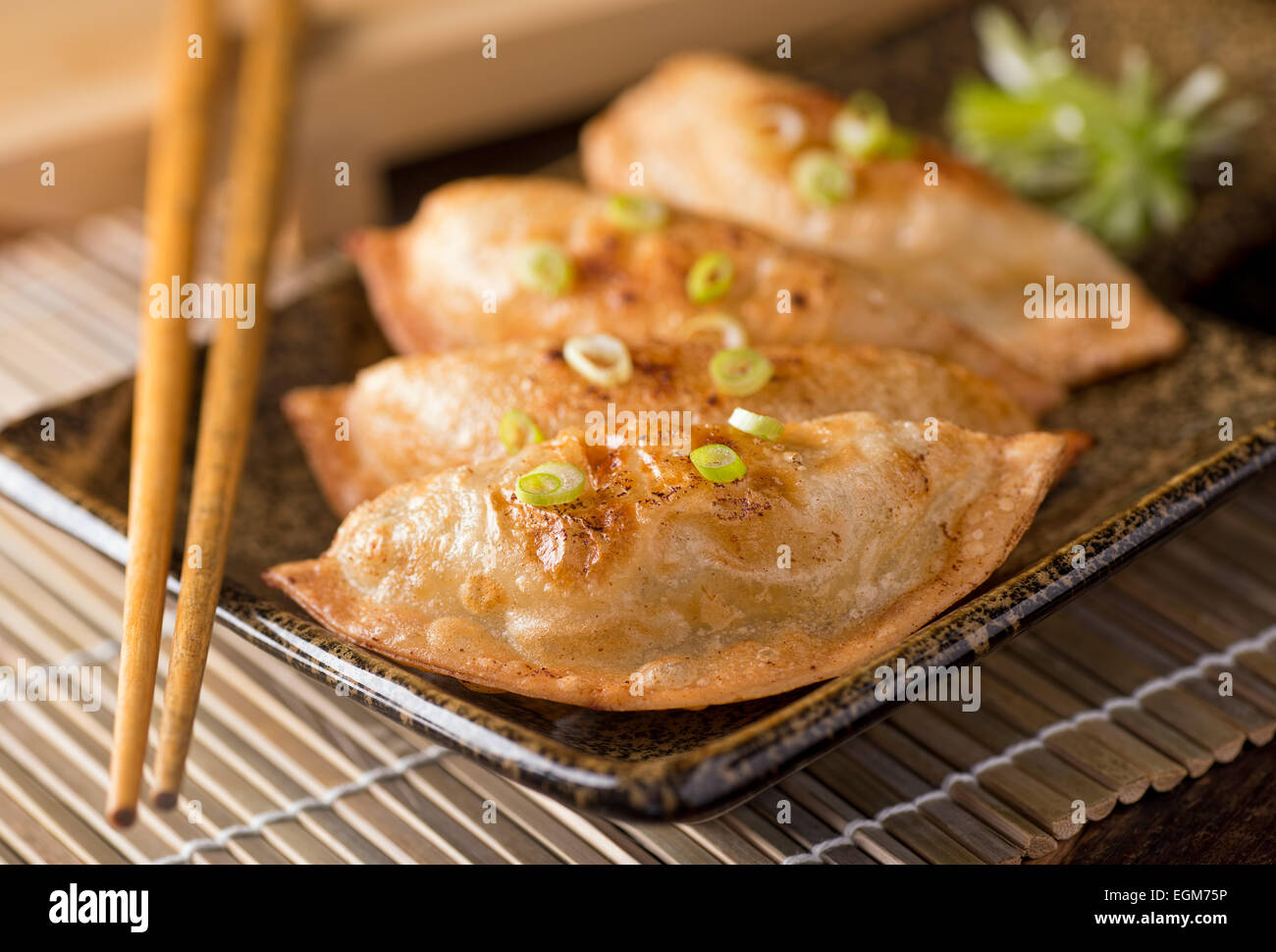 A plate of delicious asian pot stickers with scallions. - Stock Image