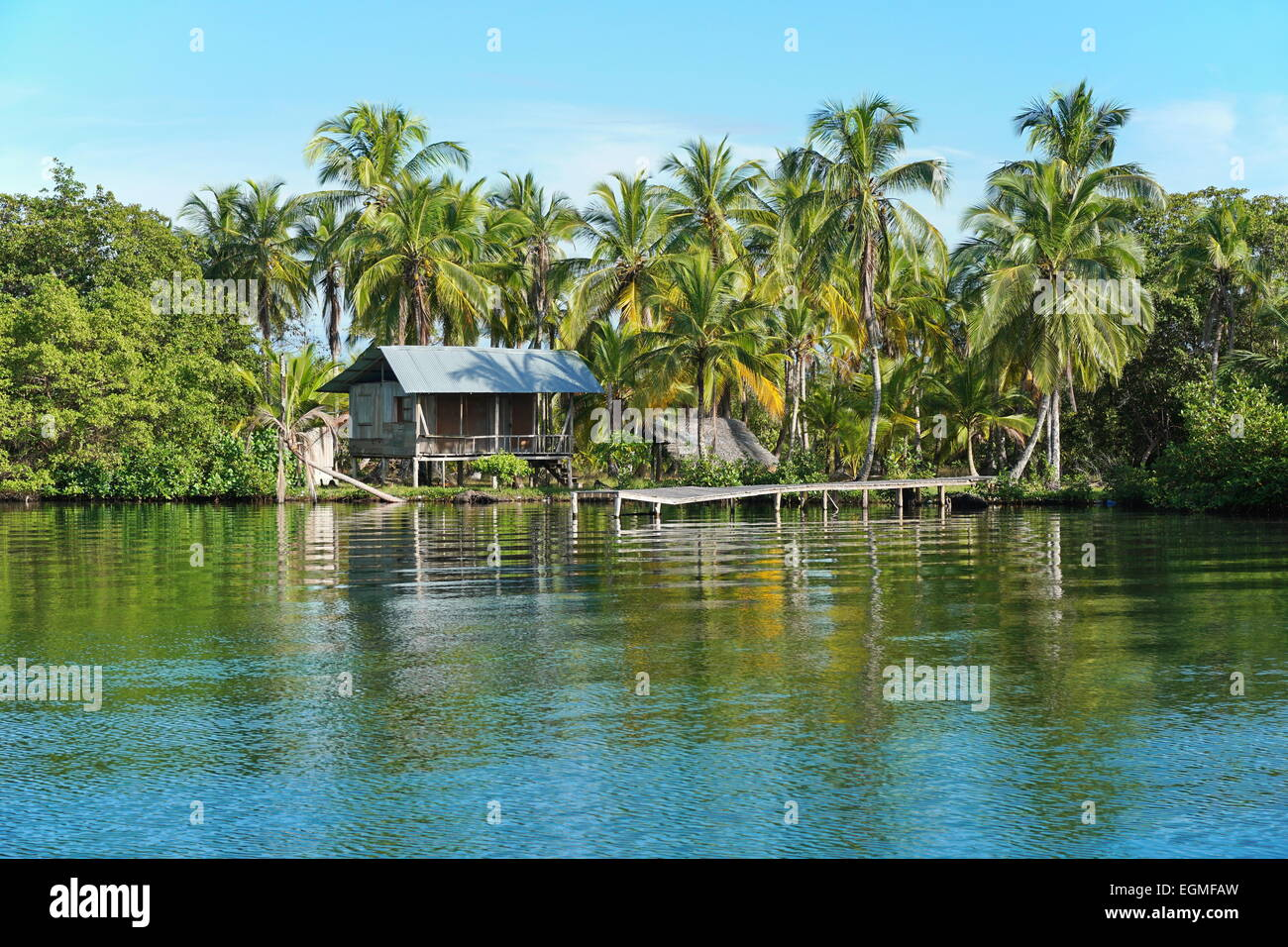 Rustic Amerindian hut with dock on tropical shore with coconut trees, Bocas del Toro, Panama, Caribbean, Central - Stock Image