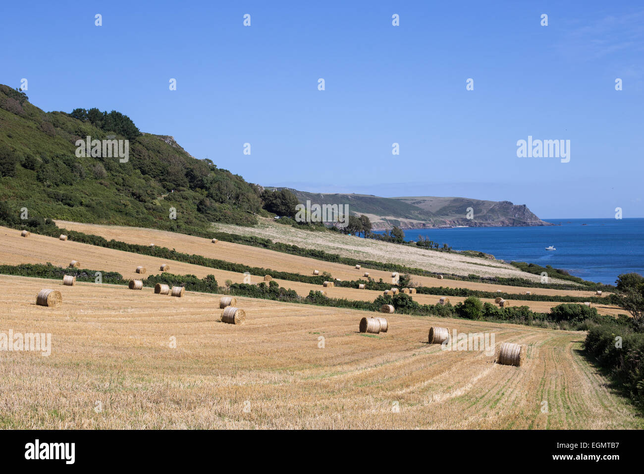 Countryside at East Prawle, Devon Stock Photo