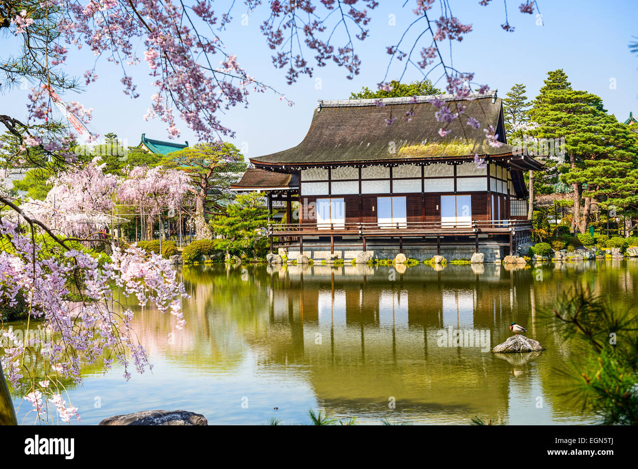 Kyoto, Japan spring at Heian Shrine's pond garden. - Stock Image