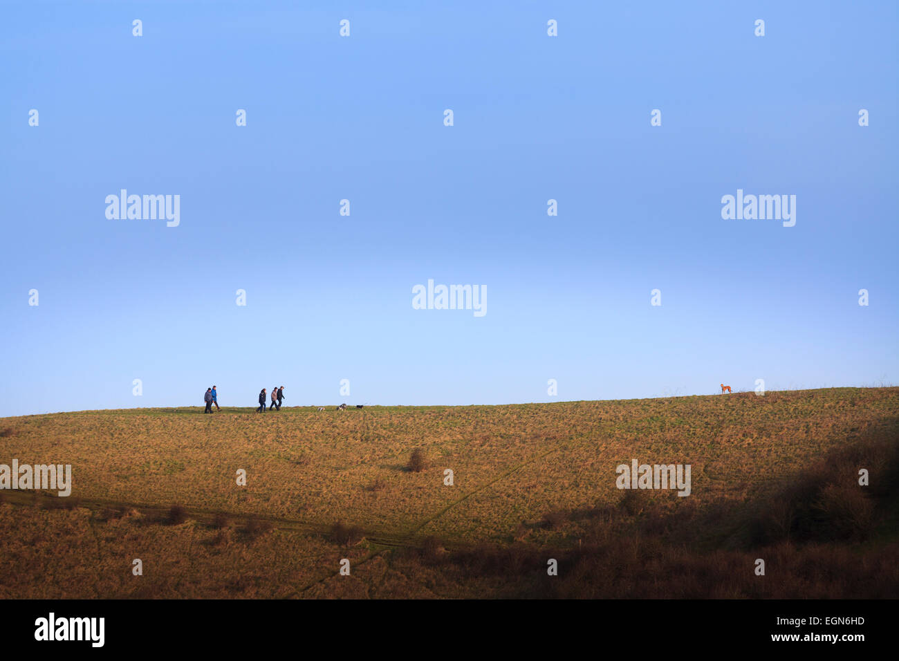 Group of walkers and dog on ridge of hill against blue sky in distance Stock Photo