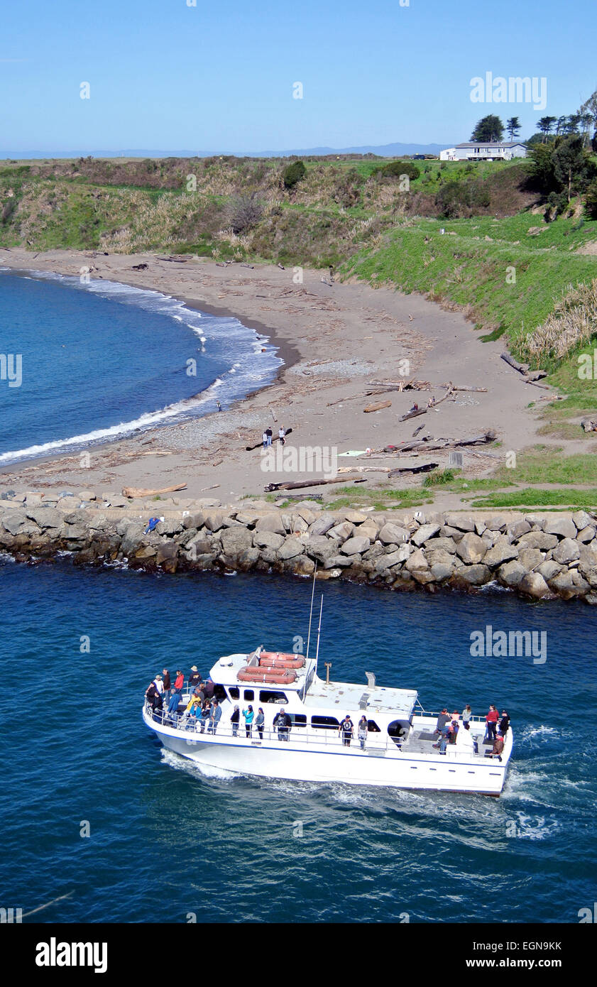 fishing boat takes whale watchers out to see migrating whales in Noyo harbor in Fort Bragg California - Stock Image