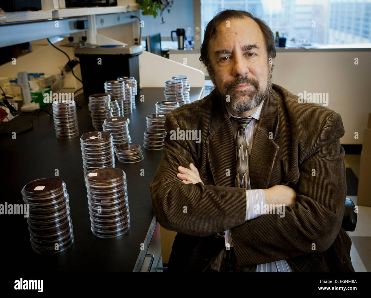 Scientist and professor Dr. Robert S. Daum at the University of Chicago. - Stock Image