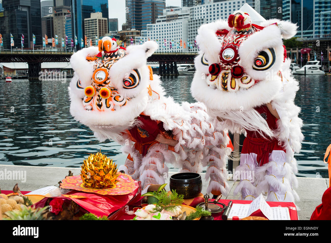 Sydney, Australia. 28th February, 2015. A Lion Dance performance was held before the start of the 2015 Sydney Chinese - Stock Image