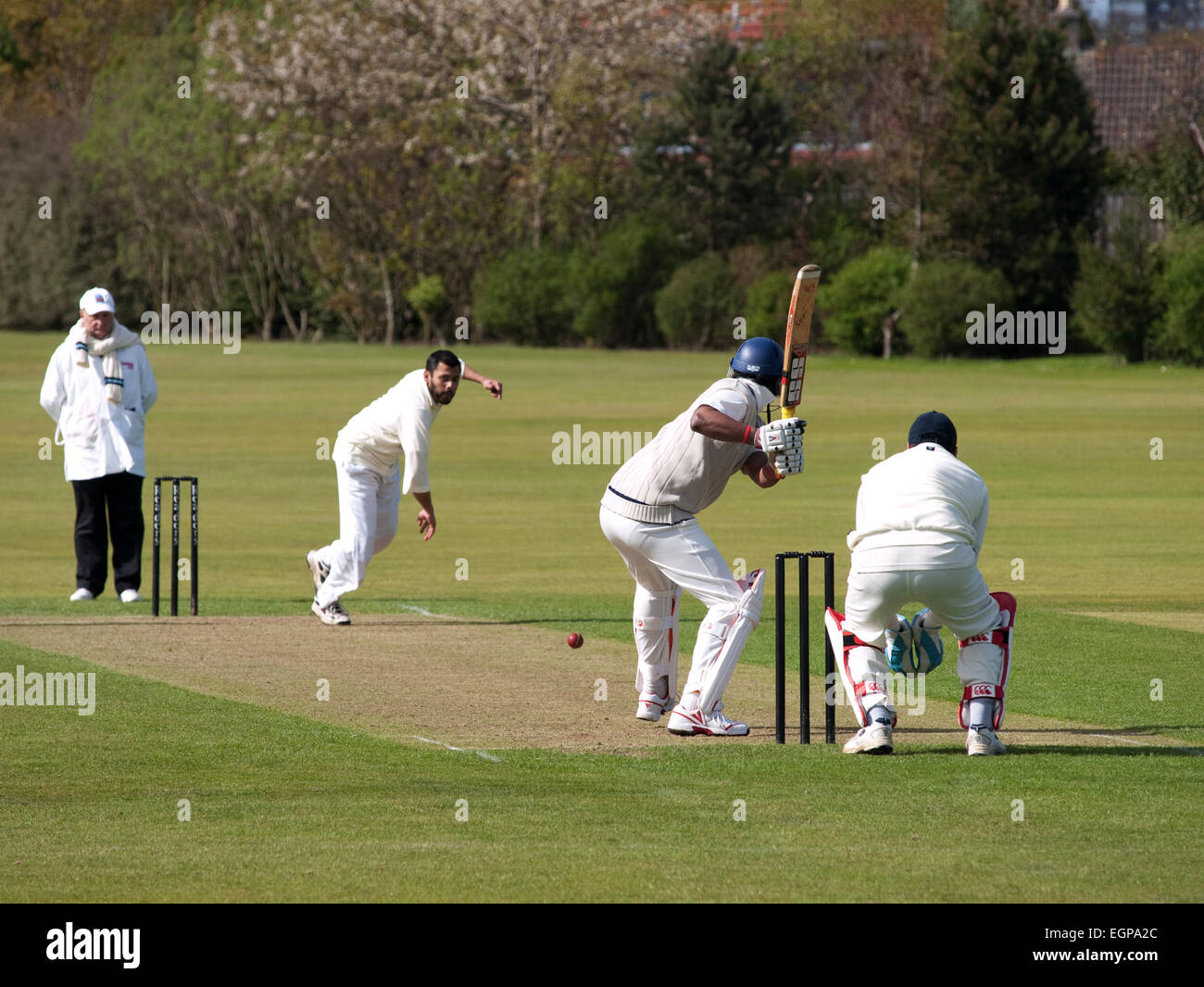 Playing cricket at a local league match - Stock Image