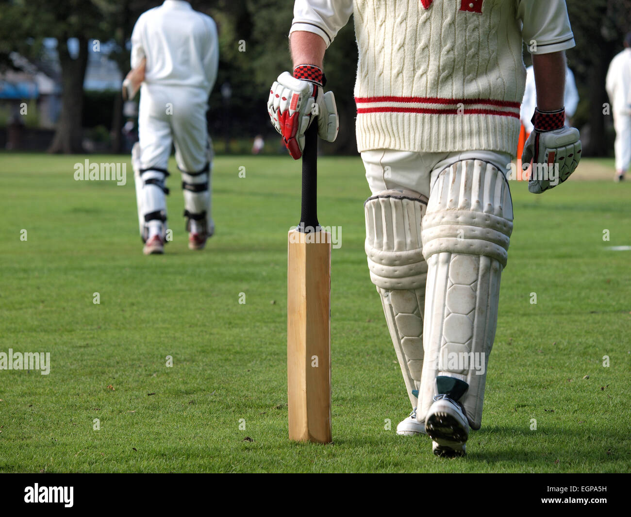 Playing cricket at a local league match Stock Photo