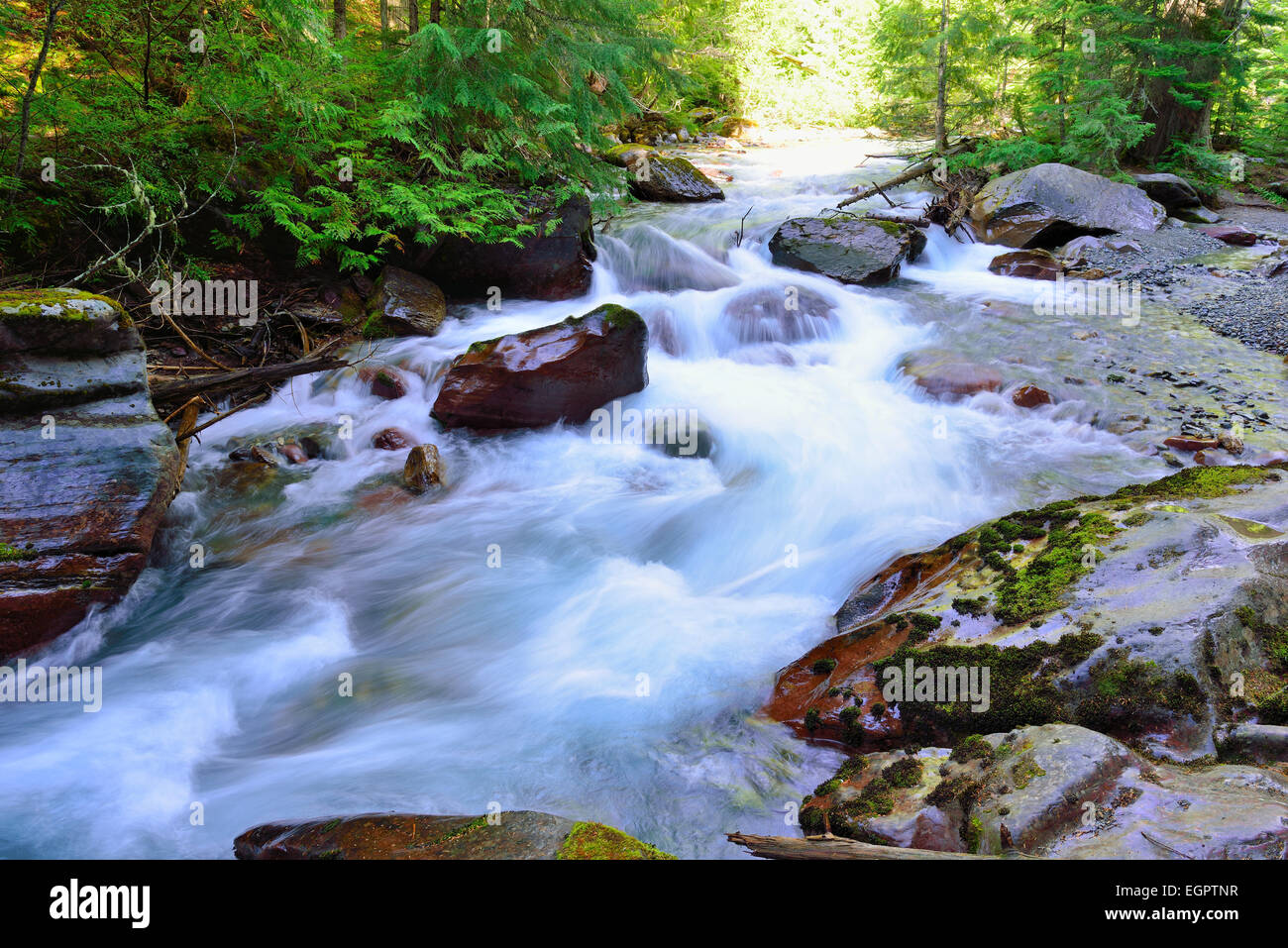whitewater along the Avalanche lake trail in Glacier National Park - Stock Image
