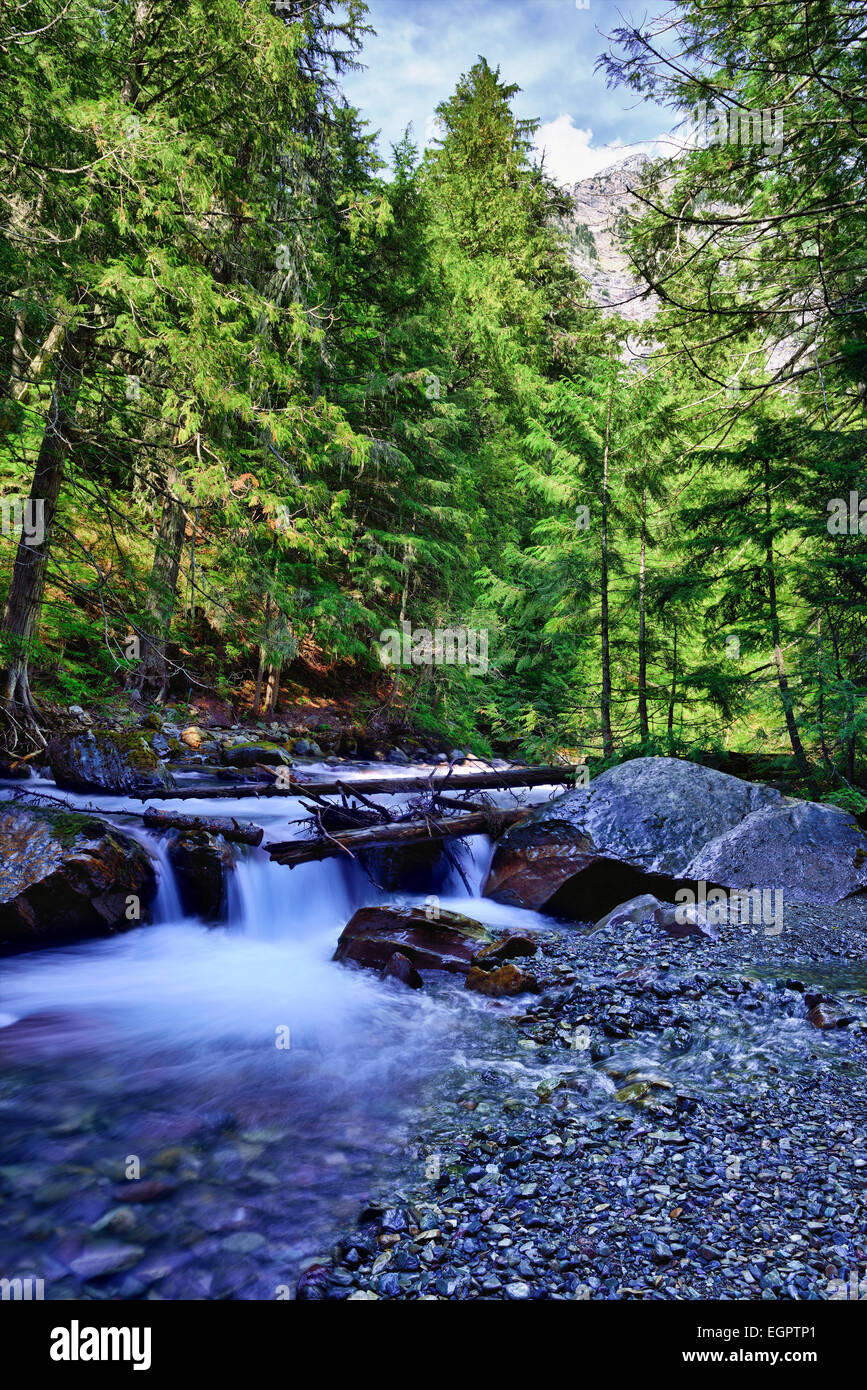 small waterfall along the Avalanche lake trail in Glacier National Park - Stock Image