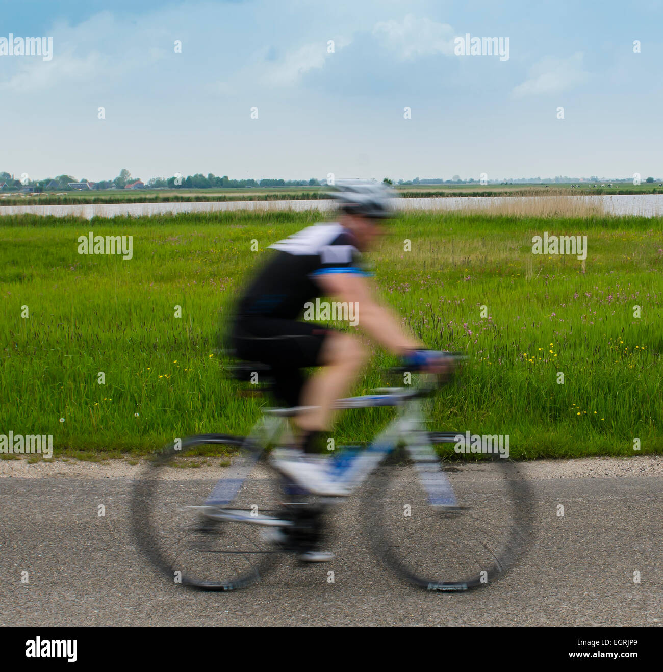 Fast biker on the road along a nature reserve of Staatsbosbeheer. - Stock Image