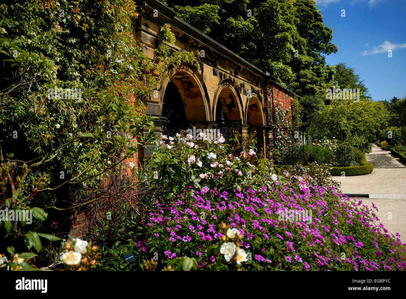 United Kingdom The Alnwick Garden Beauty Bloom Blooming Blossom ...