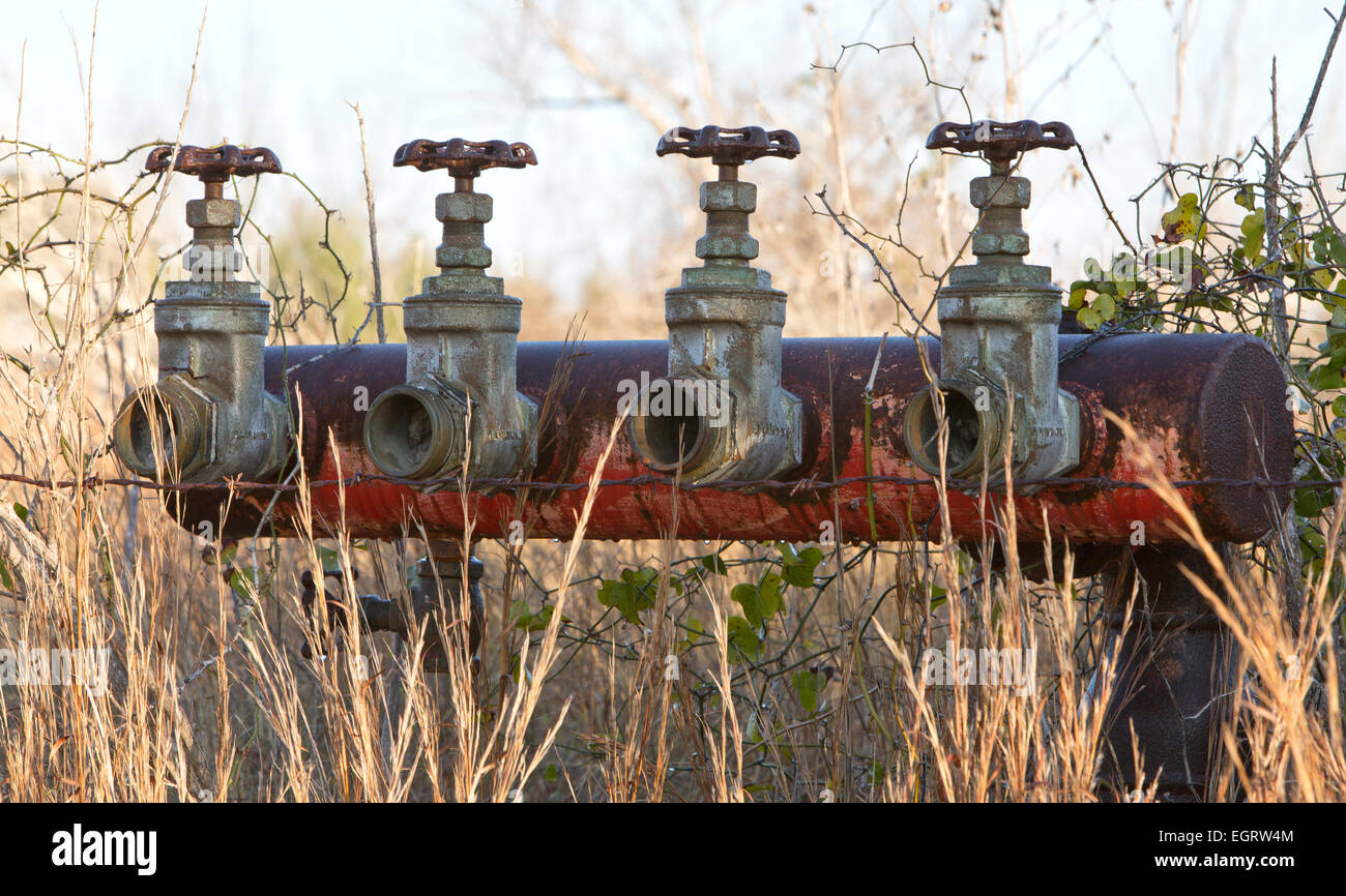 Abandoned 2-1/4  inch brass gate valves mounted on manifold. - Stock Image