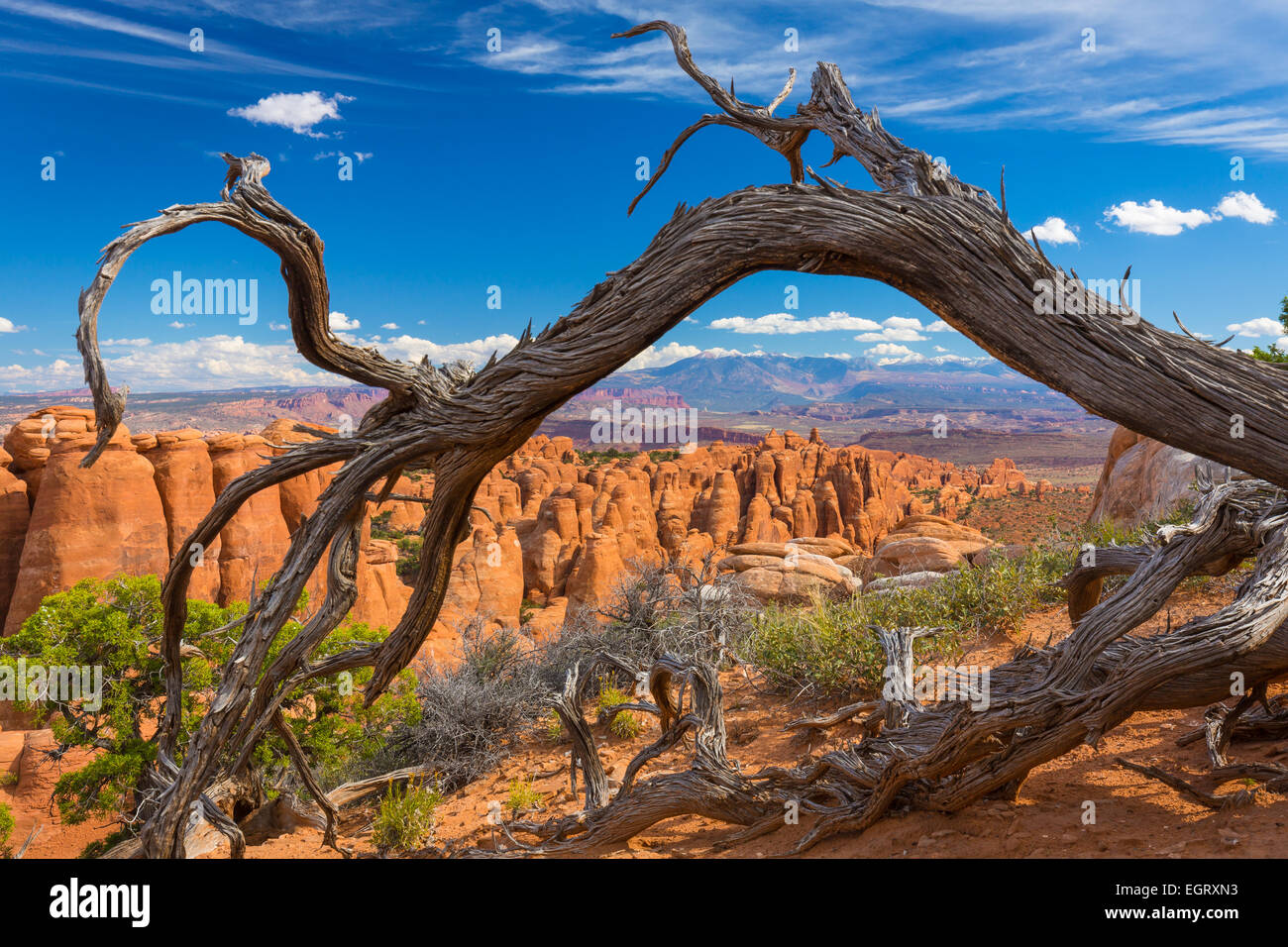 The Fiery Furnace is a collection of narrow sandstone canyons in Arches National Park in Utah, United States. - Stock Image