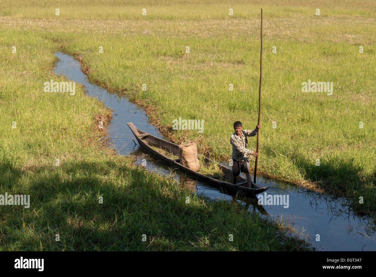 Man Driving Boat With Pole On A Small Canal, Wetlands, Majuli Island - Stock Image