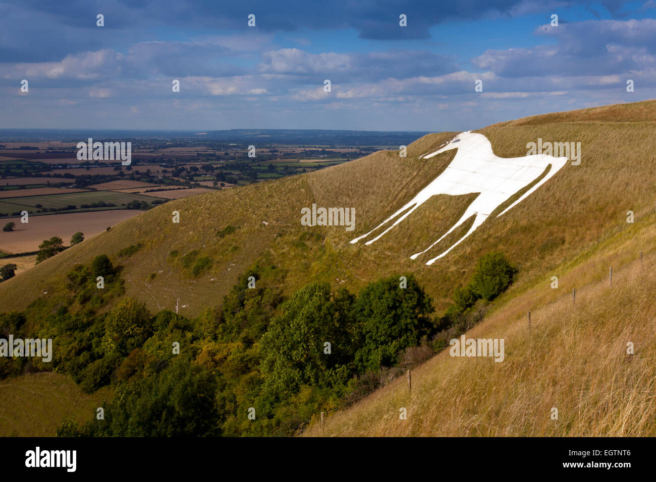 A landscape view of the Westbury White Horse on the edge of Bratton Downs, Wiltshire, England Stock Photo