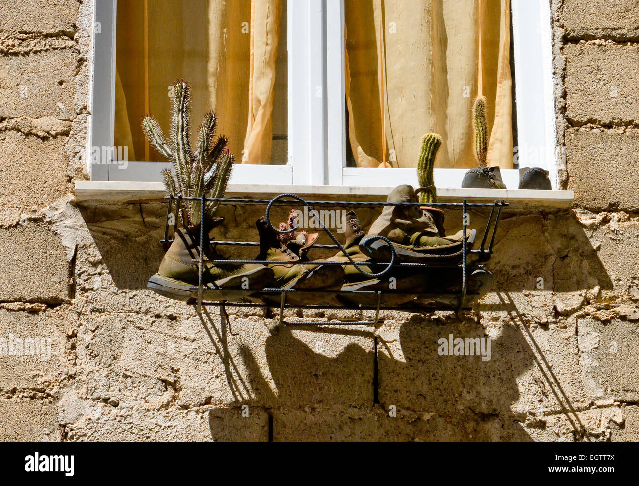 Window box in Orgosolo Sardinia - Stock Image