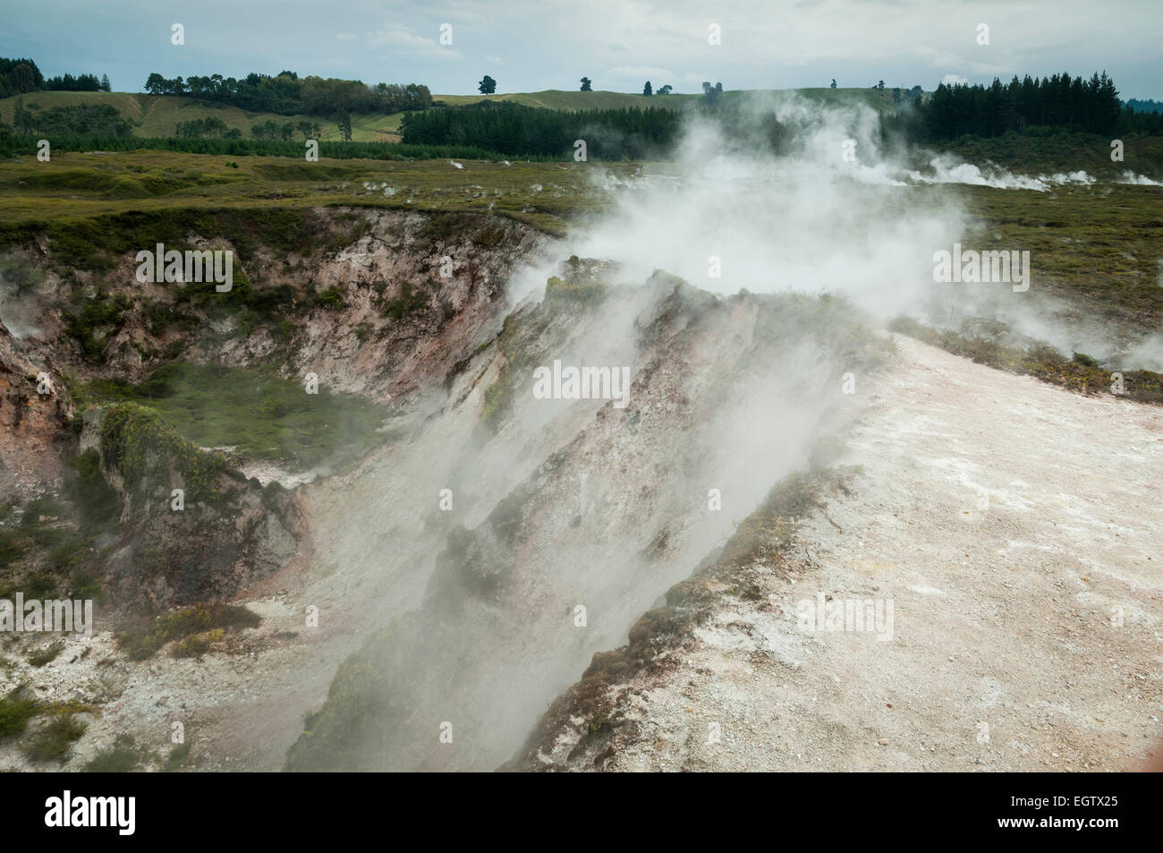 Craters of the Moon geothermal area, Taupo, Waikato, North Island, New Zealand. - Stock Image