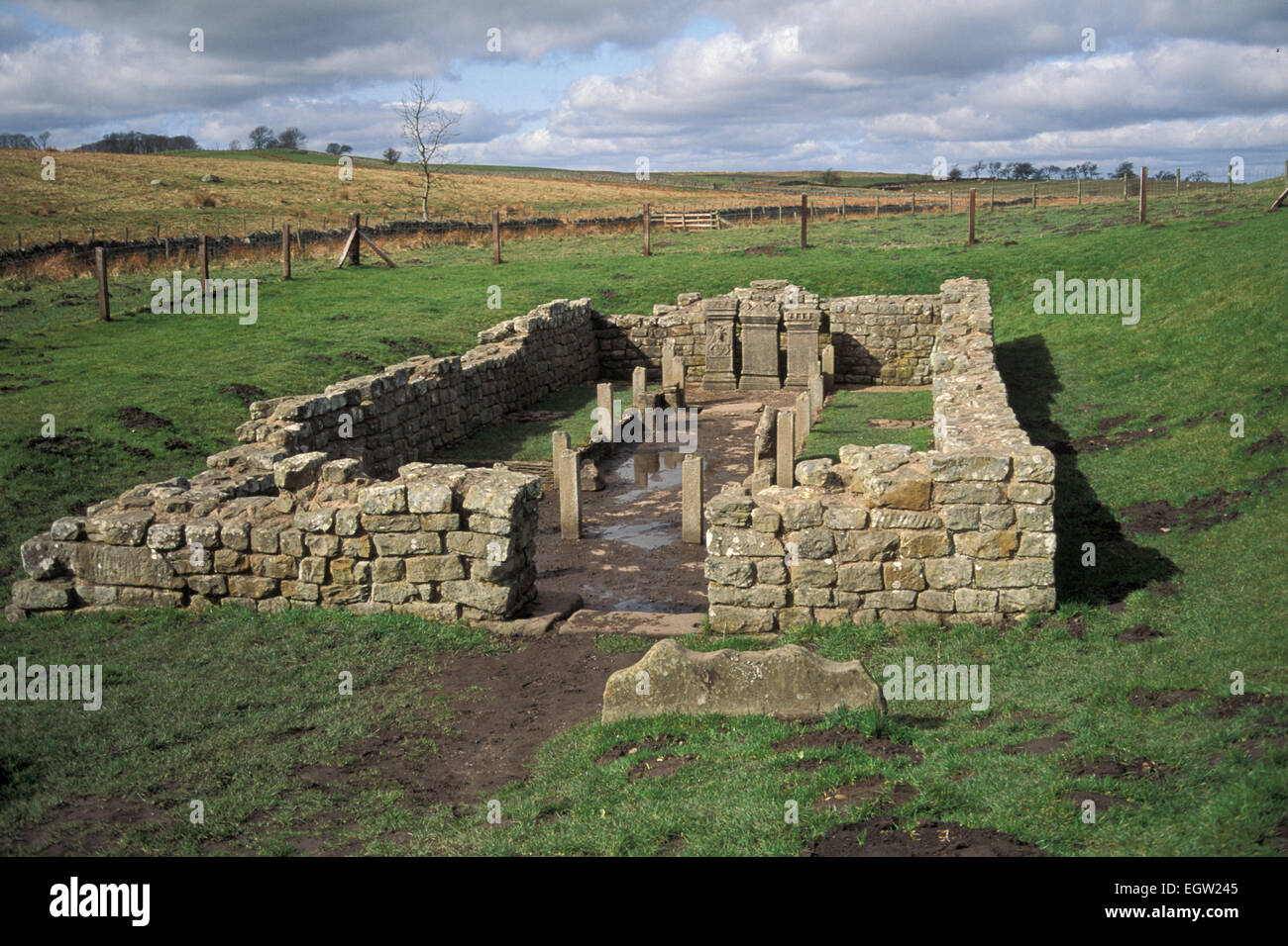 Hadrian's Wall Temple of Mithras, Carrawburgh Northumberland England UK - Stock Image