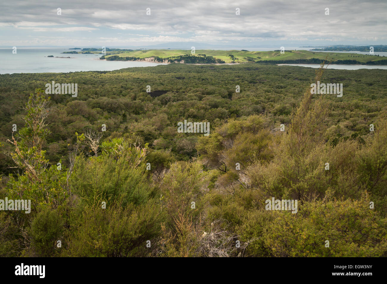Rangitoto and Motutapu Island, Auckland, North Island, New Zealand. - Stock Image