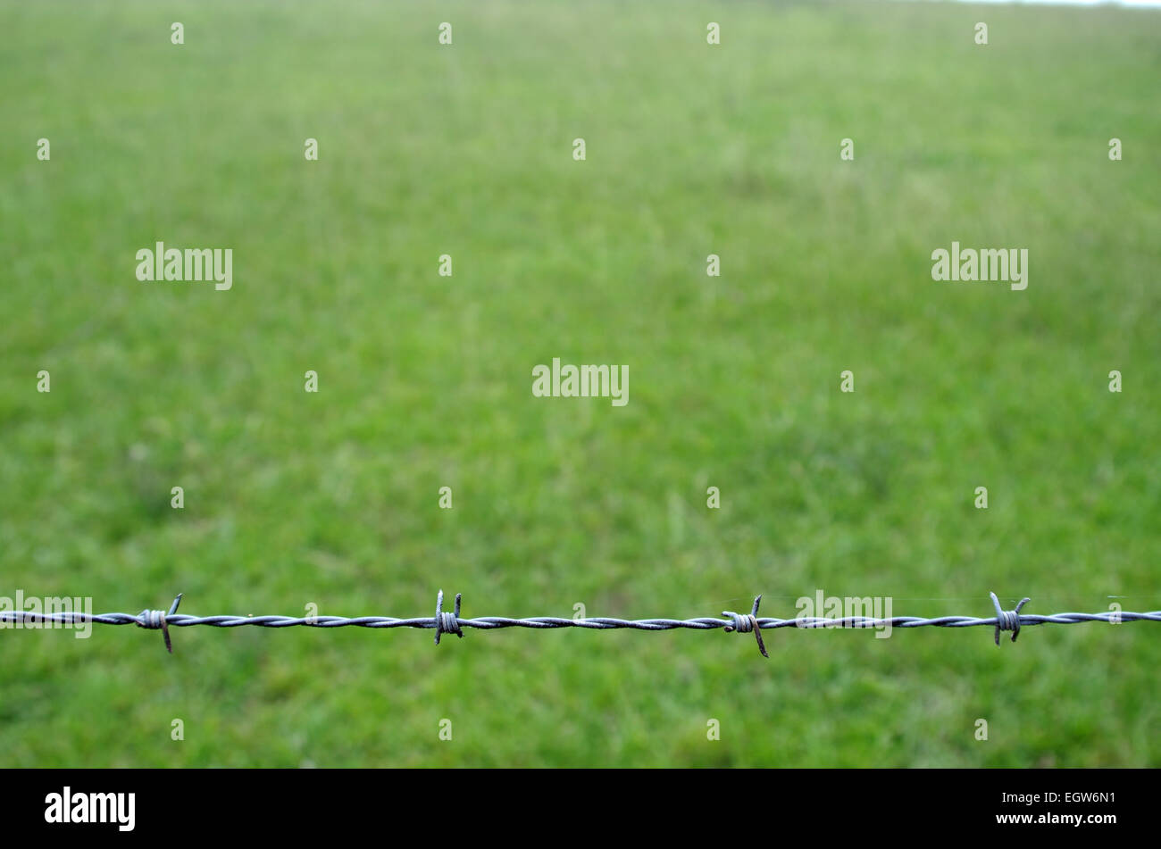 Barbed Wire fence at bottom of image - Stock Image