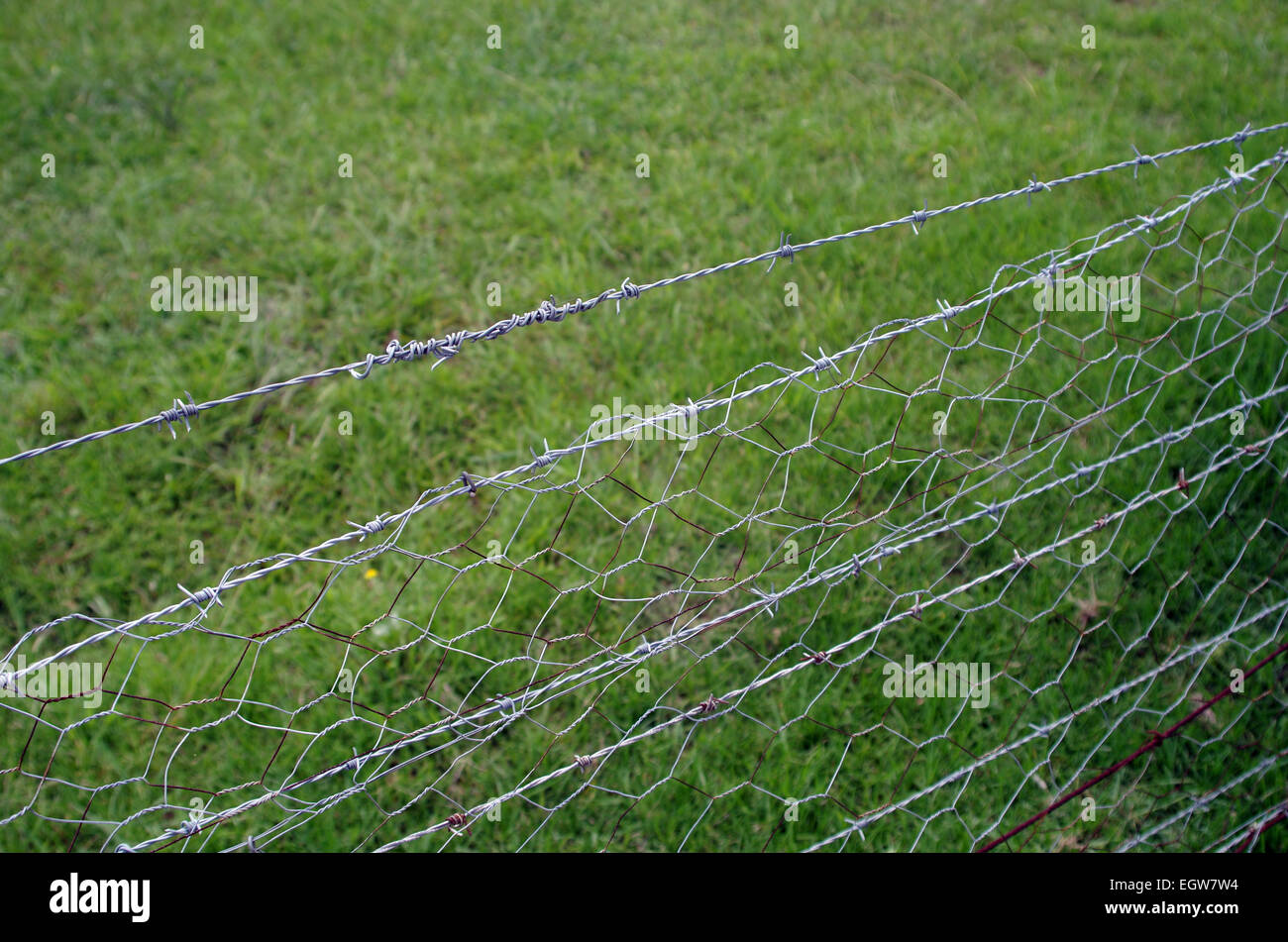 Barbed Wire fence, side angle - Stock Image