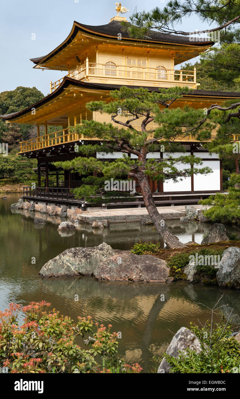 Kyoto, Japan. The gardens of Kinkaku-ji temple (the Golden Pavilion ...
