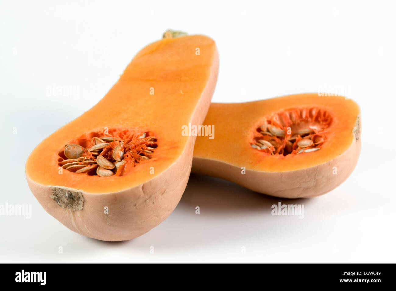 Butternut squash cut in half on white background Stock Photo