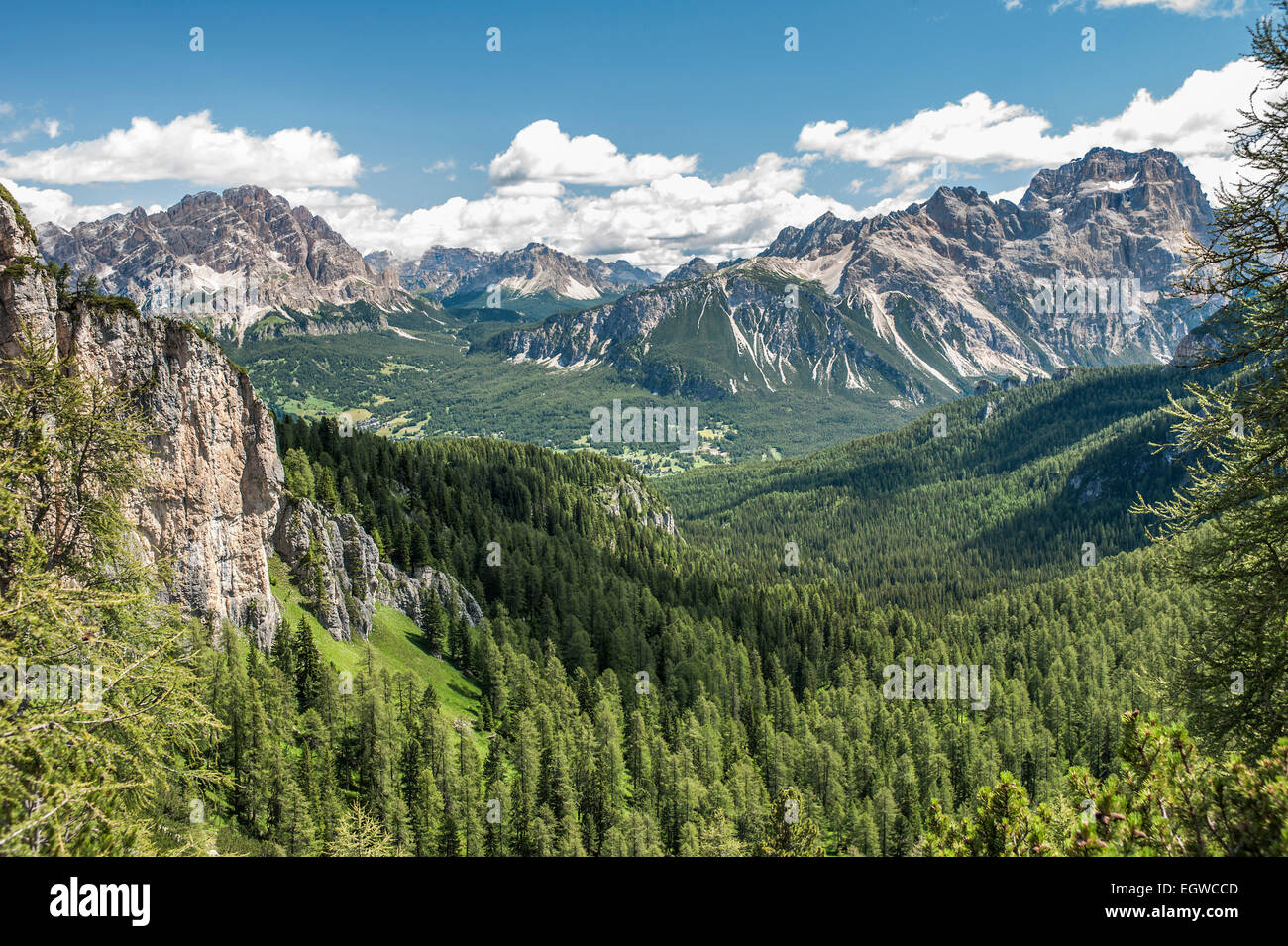 Mountain landscape with spruce forests near Cortina d'Ampezzo, view from the 5 Torri Des-Alpes-Areal - Stock Image